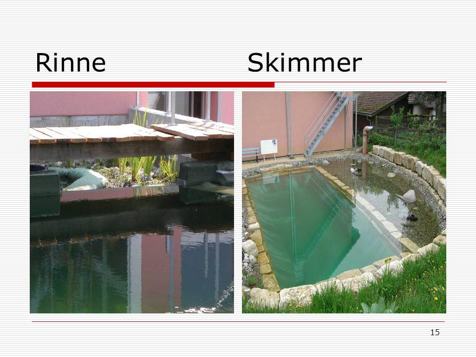15 Rinne Skimmer