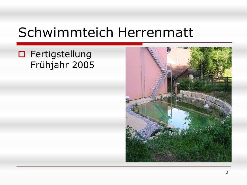 3 Schwimmteich Herrenmatt Fertigstellung Frühjahr 2005