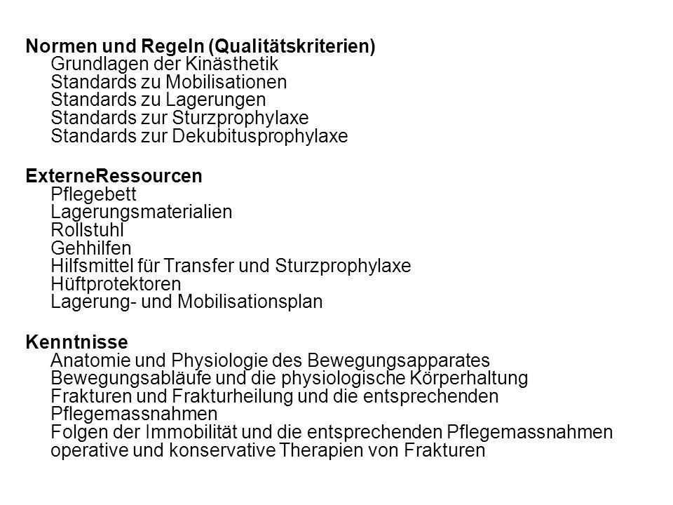 Normen und Regeln (Qualitätskriterien) Grundlagen der Kinästhetik Standards zu Mobilisationen Standards zu Lagerungen Standards zur Sturzprophylaxe St