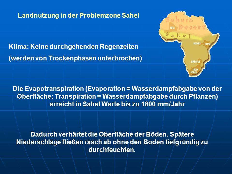 Landnutzung in der Problemzone Sahel Klima: Keine durchgehenden Regenzeiten (werden von Trockenphasen unterbrochen) Die Evapotranspiration (Evaporatio