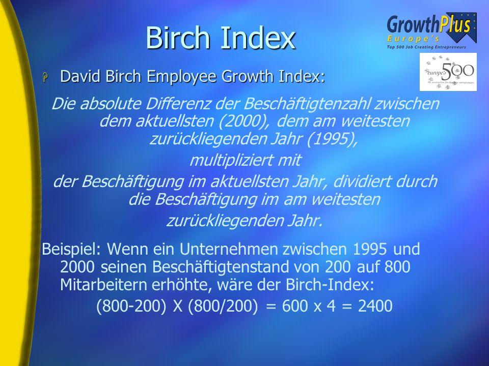 Worin bestehen die Kriterien von Europes 500? H Unternehmerisches Engagement H Unabhängigkeit H Umsatz- und Beschäftigungswachstum zwischen 1995 und 2