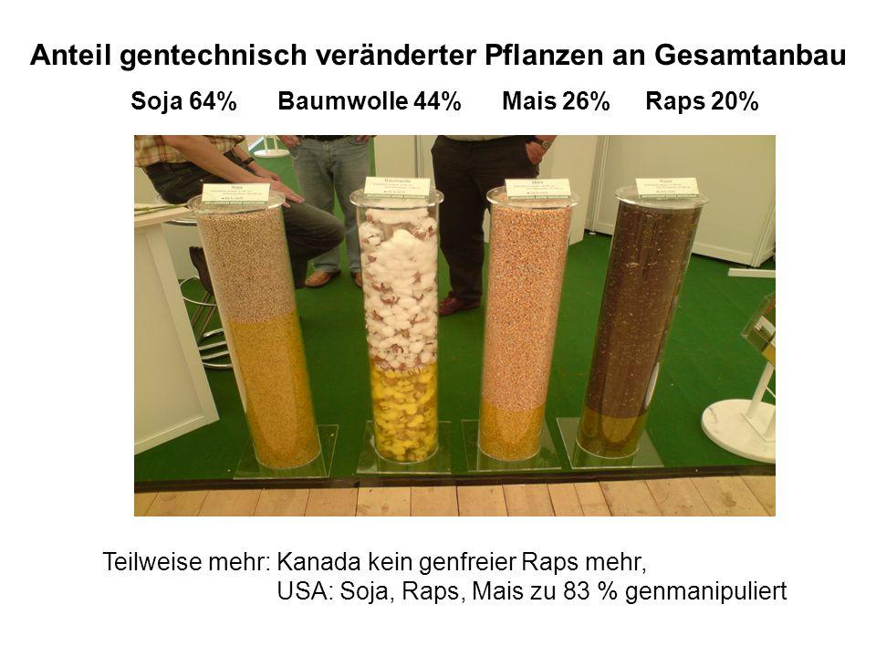 Anteil gentechnisch veränderter Pflanzen an Gesamtanbau Soja 64% Baumwolle 44% Mais 26% Raps 20% Teilweise mehr: Kanada kein genfreier Raps mehr, USA: