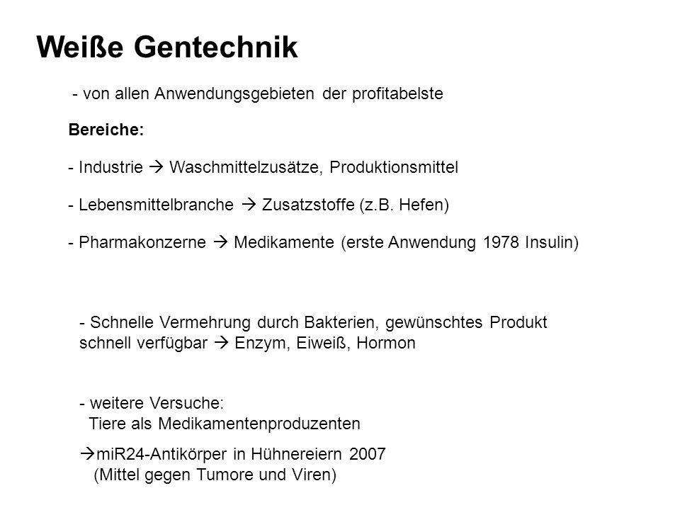 Grüne Gentechnik Das erste Produkt auf dem Markt: die Flavr-Savr-Tomate (Anti-Matsch) 1994: -Ratten essen sie nicht -Kunden beklagen sich über metallischen Geschmack Zeittafel 1983 erster Gentransfer bei Pflanzen (mit Agrobacterium) 1987 erste Freisetzungen in den USA (Tabak, Tomate) 1987 Gentransfer mit Gen-Kanone 1991 erste Freisetzung in Deutschland (Petunien) 1994 transgene Anti-Matsch- Tomate auf dem Markt 1996/ erster Anbau von Gen-Soja, 1997 -Mais, -Raps und -Baumwolle in Nordamerika 1998 EU: Moratorium für Gen- Pflanzen 2004 EU: Wiederaufnahme von Zulassungen 2008 Gentechnikanbau in Europa fast ausschließlich in Spanien YUK!