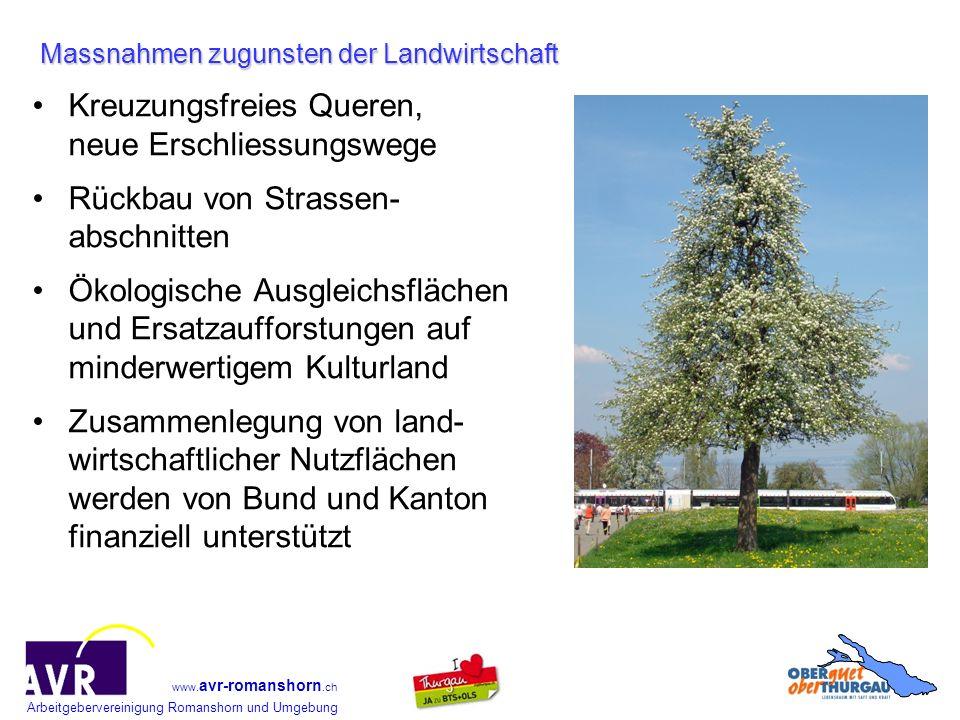 Arbeitgebervereinigung Romanshorn und Umgebung www. avr-romanshorn.ch Kreuzungsfreies Queren, neue Erschliessungswege Rückbau von Strassen- abschnitte