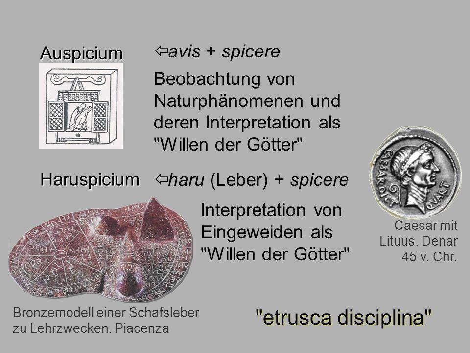 Sagen6 Auspicium Auspicium avis + spicere Beobachtung von Naturphänomenen und deren Interpretation als