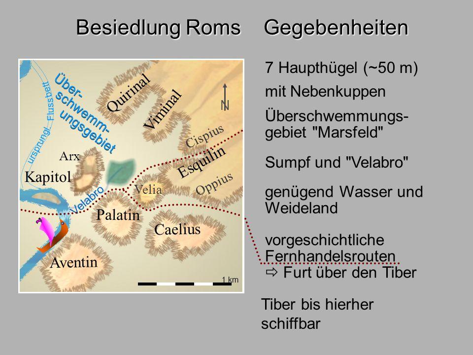 Besiedl.Rom1 1 km Quirinal Viminal Esquilin Caelius Aventin Palatin Kapitol Cispius Oppius Velia Arx Über- schwemm- ungsgebiet Velabro Besiedlung Roms