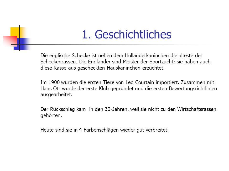 1. Geschichtliches Die englische Schecke ist neben dem Holländerkaninchen die älteste der Scheckenrassen. Die Engländer sind Meister der Sportzucht; s