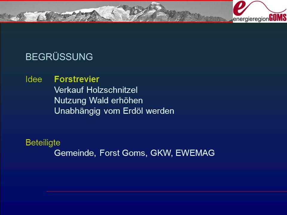 Betreibermodell = Genossenschaft Genossenschaft Holzschnitzeiheizung Ernen GHE baut und betreibt die Anlage Planung & Bau erfolgt durch Groupe-E (Genossenschafter)