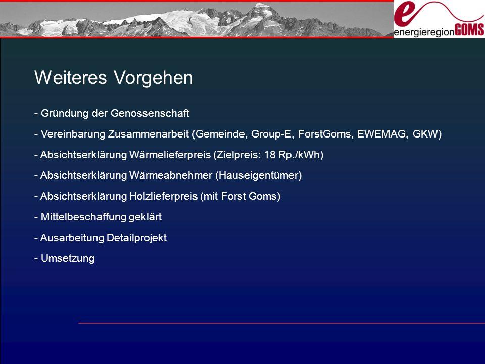 Weiteres Vorgehen - Gründung der Genossenschaft - Vereinbarung Zusammenarbeit (Gemeinde, Group-E, ForstGoms, EWEMAG, GKW) - Absichtserklärung Wärmelieferpreis (Zielpreis: 18 Rp./kWh) - Absichtserklärung Wärmeabnehmer (Hauseigentümer) - Absichtserklärung Holzlieferpreis (mit Forst Goms) - Mittelbeschaffung geklärt - Ausarbeitung Detailprojekt - Umsetzung