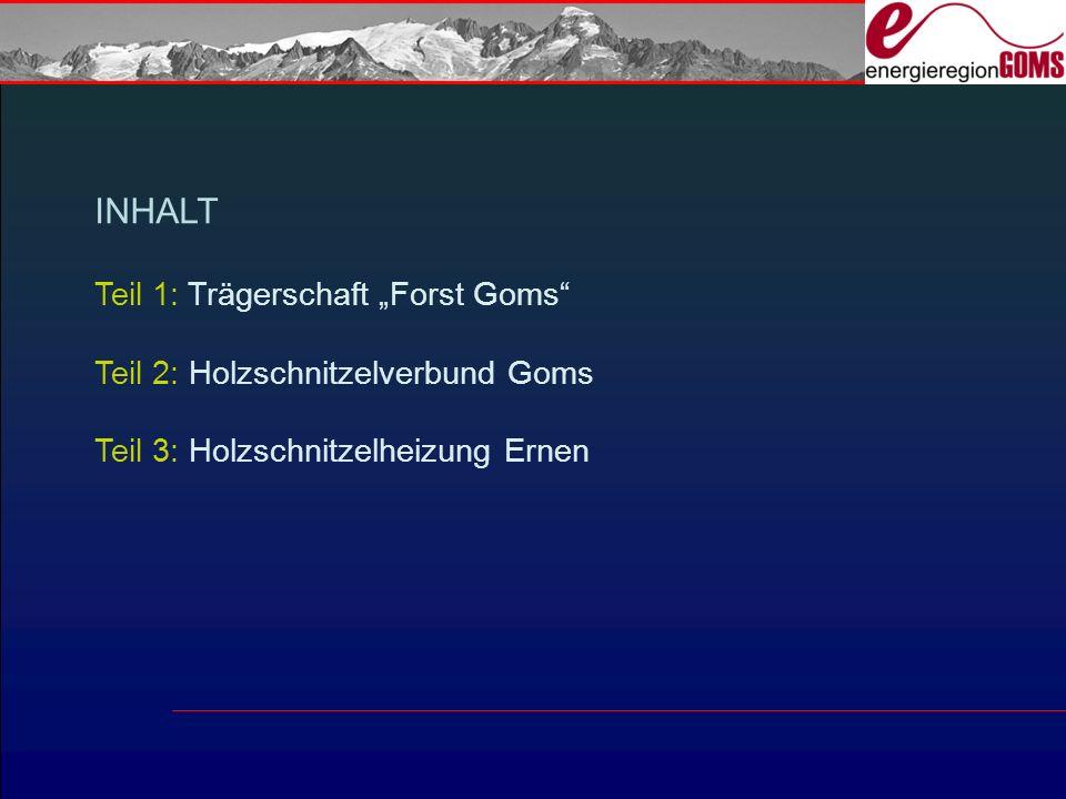 INHALT Teil 1: Trägerschaft Forst Goms Teil 2: Holzschnitzelverbund Goms Teil 3: Holzschnitzelheizung Ernen
