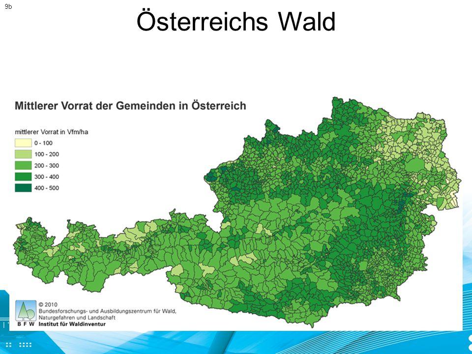 Österreichs Wald 9b