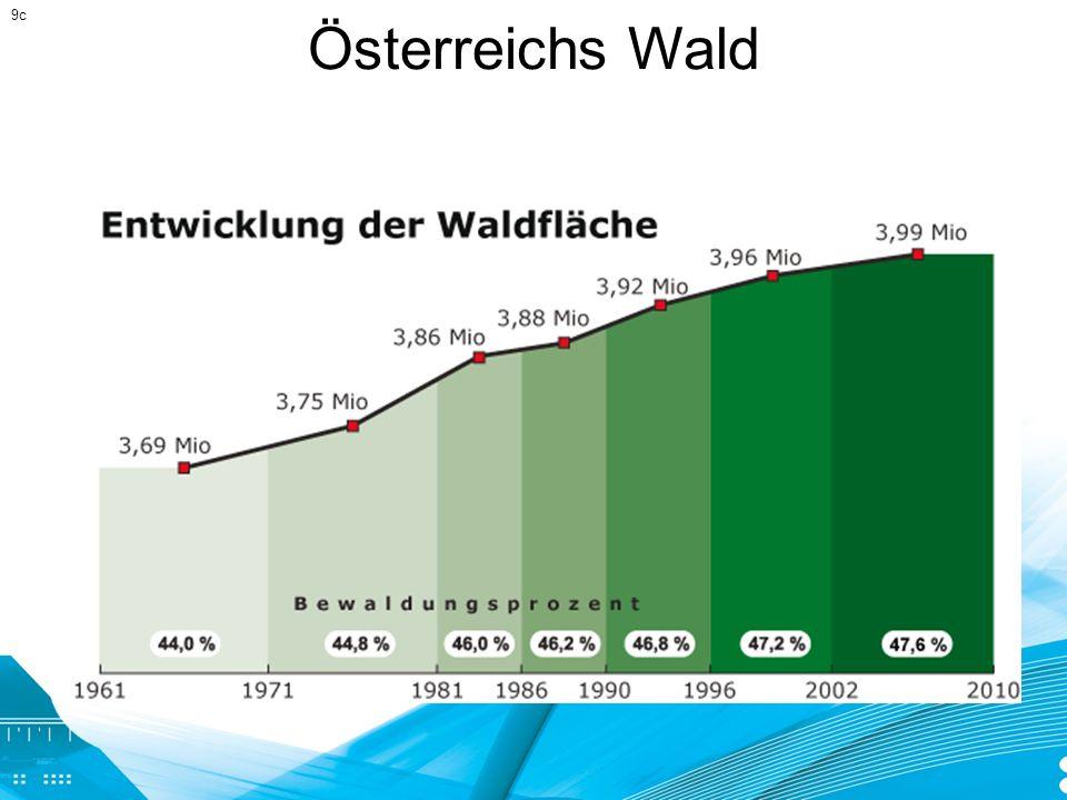 Österreichs Wald 9c
