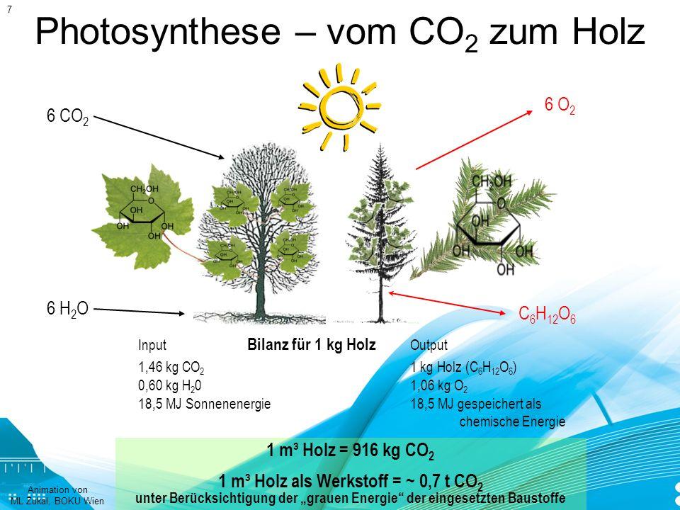 Photosynthese – vom CO 2 zum Holz Input Bilanz für 1 kg Holz Output 1,46 kg CO 2 1 kg Holz (C 6 H 12 O 6 ) 0,60 kg H 2 01,06 kg O 2 18,5 MJ Sonnenener