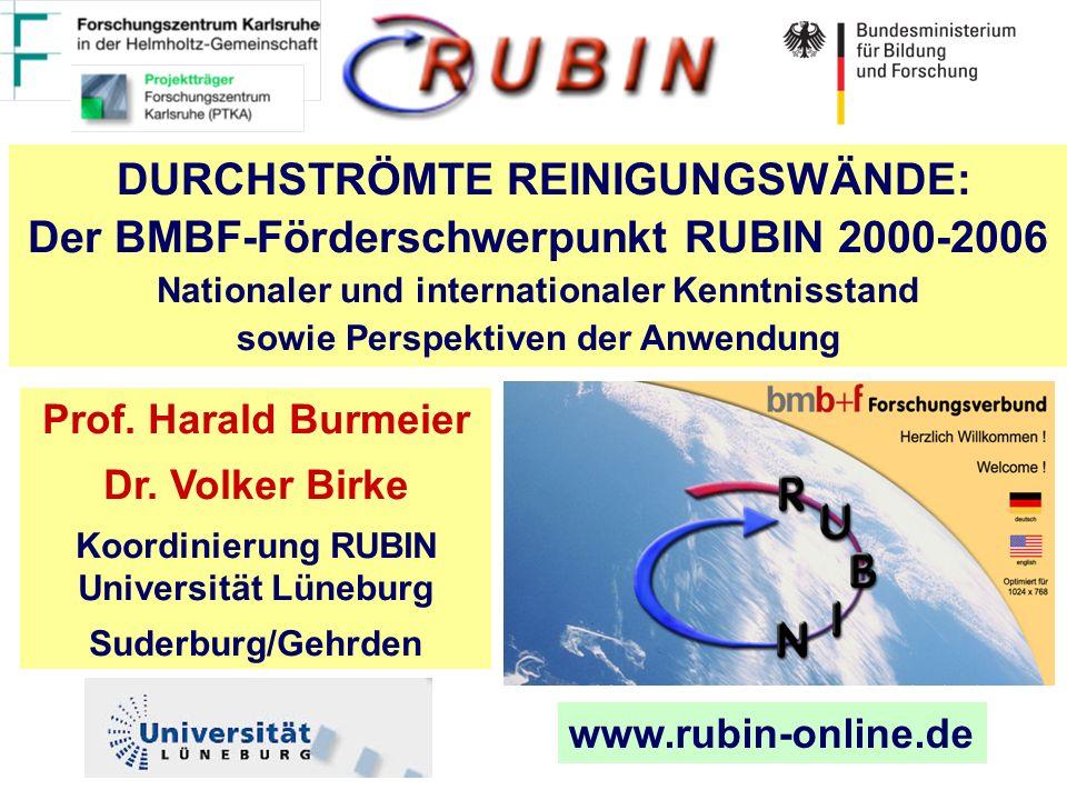 www.rubin-online.de DURCHSTRÖMTE REINIGUNGSWÄNDE: Der BMBF-Förderschwerpunkt RUBIN 2000-2006 Nationaler und internationaler Kenntnisstand sowie Perspektiven der Anwendung Prof.