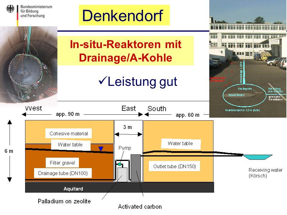 Leistung gut In-situ-Reaktoren mit Drainage/A-Kohle Denkendorf