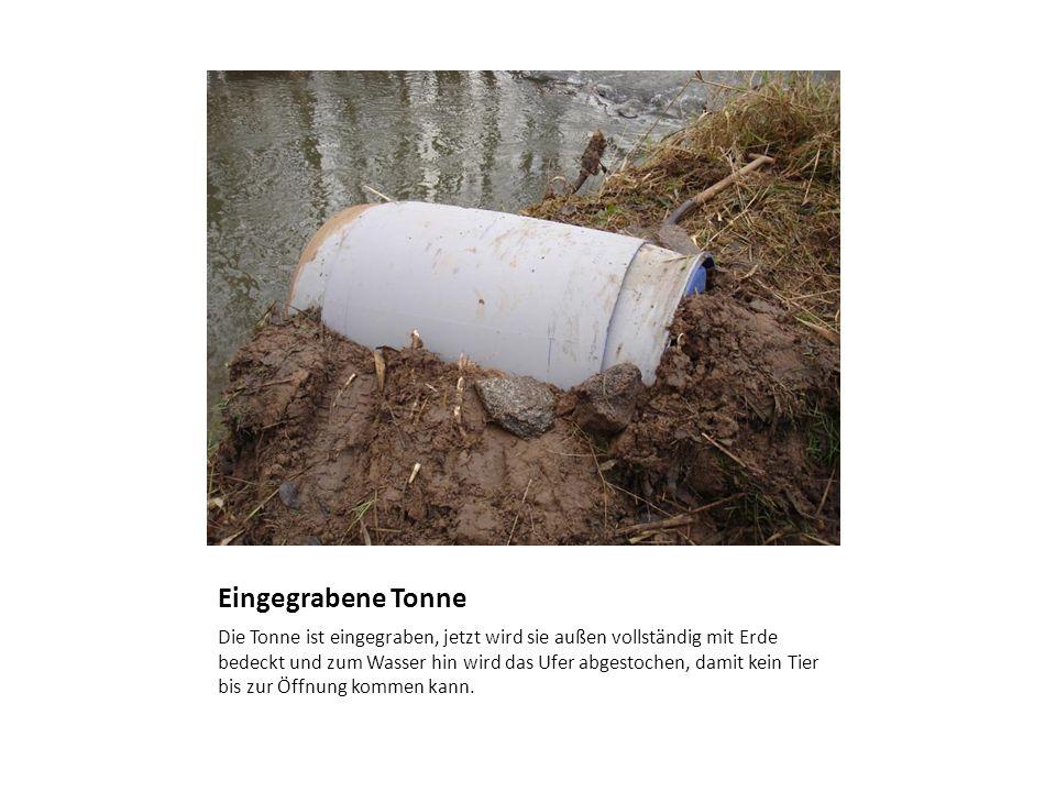 Eingegrabene Tonne Die Tonne ist eingegraben, jetzt wird sie außen vollständig mit Erde bedeckt und zum Wasser hin wird das Ufer abgestochen, damit ke