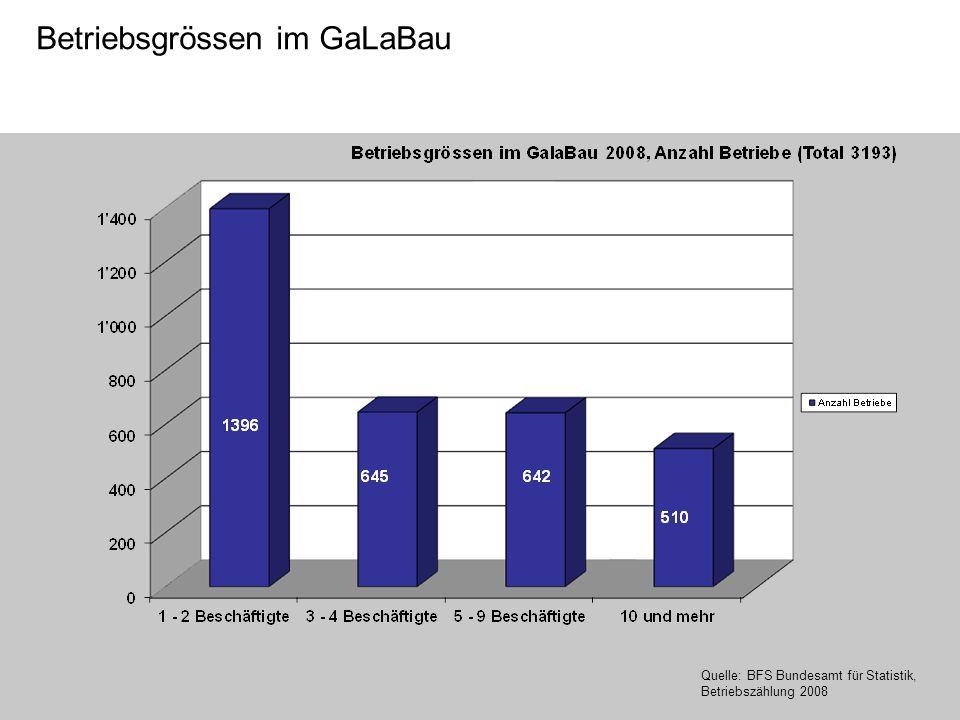 Betriebsgrössen im GaLaBau Quelle: BFS Bundesamt für Statistik, Betriebszählung 2008