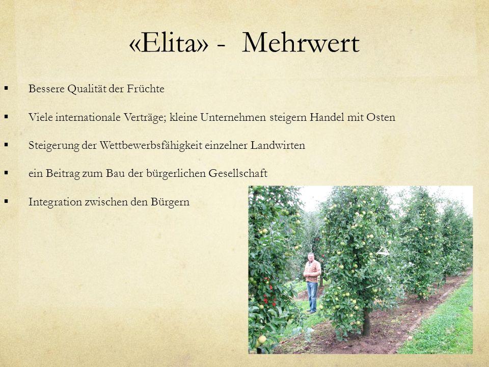 «Elita» - Mehrwert Bessere Qualität der Früchte Viele internationale Verträge; kleine Unternehmen steigern Handel mit Osten Steigerung der Wettbewerbsfähigkeit einzelner Landwirten ein Beitrag zum Bau der bürgerlichen Gesellschaft Integration zwischen den Bürgern
