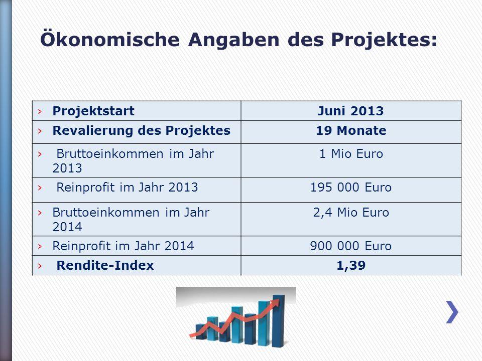 Ökonomische Angaben des Projektes: ProjektstartJuni 2013 Revalierung des Projektes19 Monate Bruttoeinkommen im Jahr 2013 1 Mio Euro Reinprofit im Jahr 2013195 000 Euro Bruttoeinkommen im Jahr 2014 2,4 Mio Euro Reinprofit im Jahr 2014900 000 Euro Rendite-Index1,39