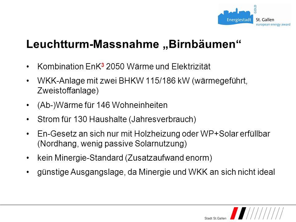 Leuchtturm-Massnahme Birnbäumen Kombination EnK 3 2050 Wärme und Elektrizität WKK-Anlage mit zwei BHKW 115/186 kW (wärmegeführt, Zweistoffanlage) (Ab-