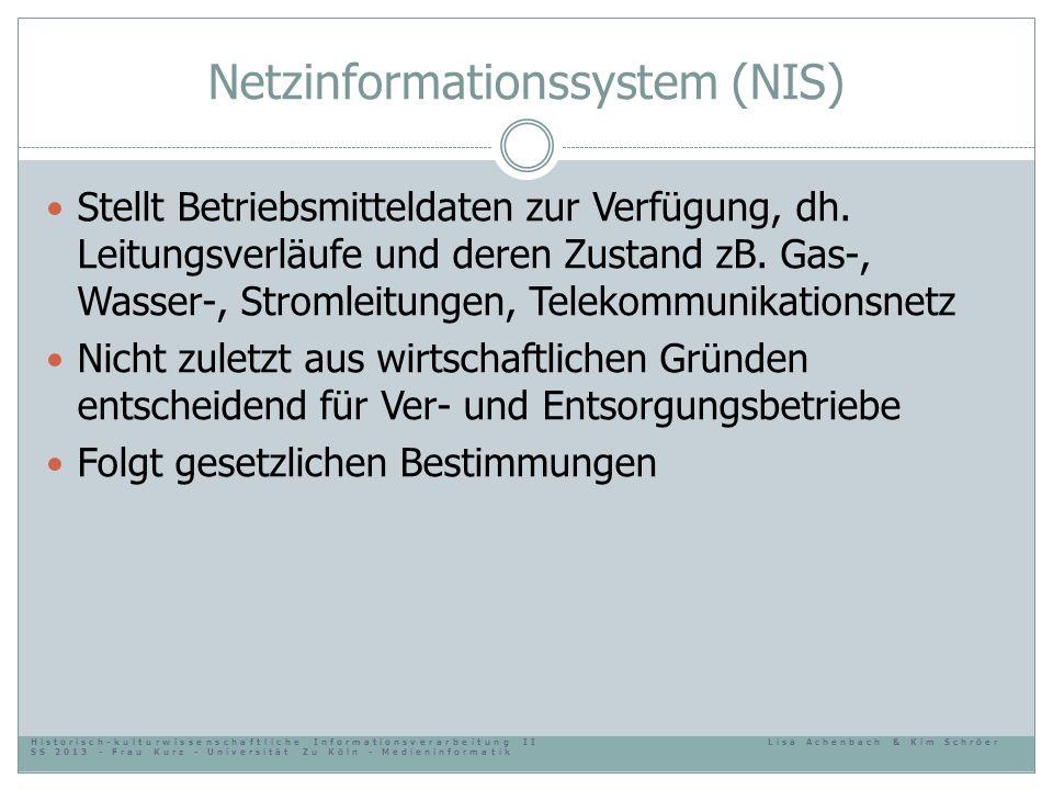 Netzinformationssystem (NIS) Stellt Betriebsmitteldaten zur Verfügung, dh. Leitungsverläufe und deren Zustand zB. Gas-, Wasser-, Stromleitungen, Telek