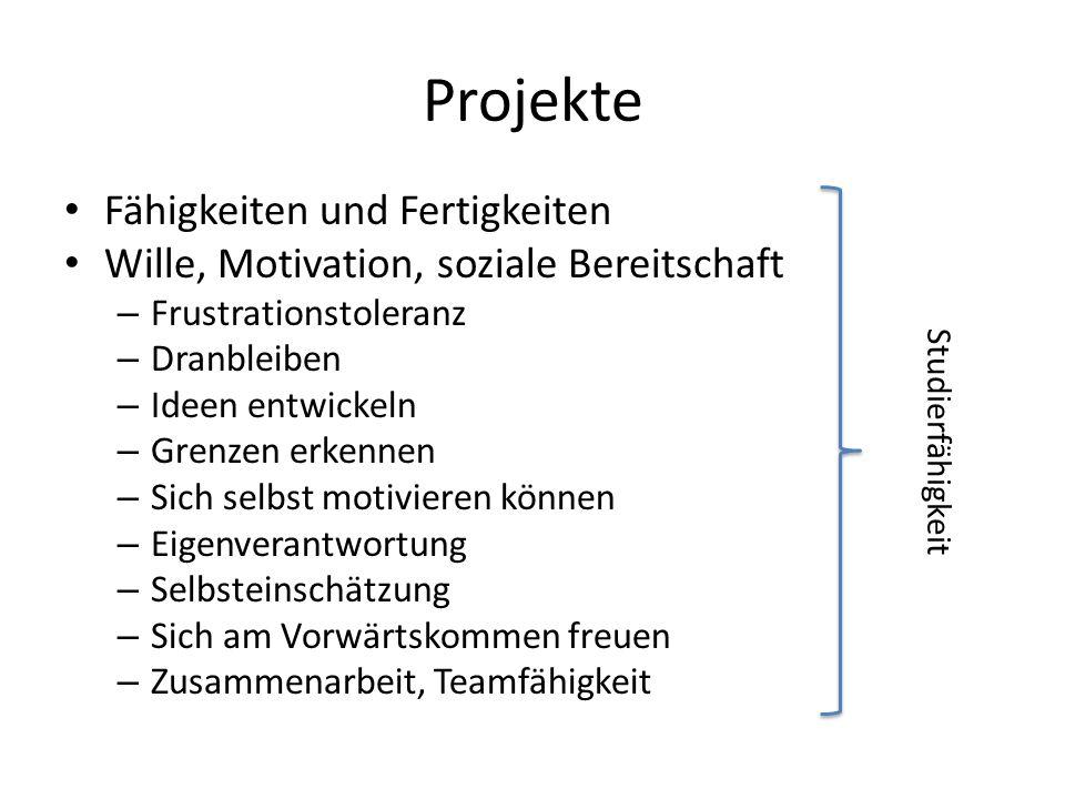Fähigkeiten und Fertigkeiten Wille, Motivation, soziale Bereitschaft – Frustrationstoleranz – Dranbleiben – Ideen entwickeln – Grenzen erkennen – Sich selbst motivieren können – Eigenverantwortung – Selbsteinschätzung – Sich am Vorwärtskommen freuen – Zusammenarbeit, Teamfähigkeit Studierfähigkeit