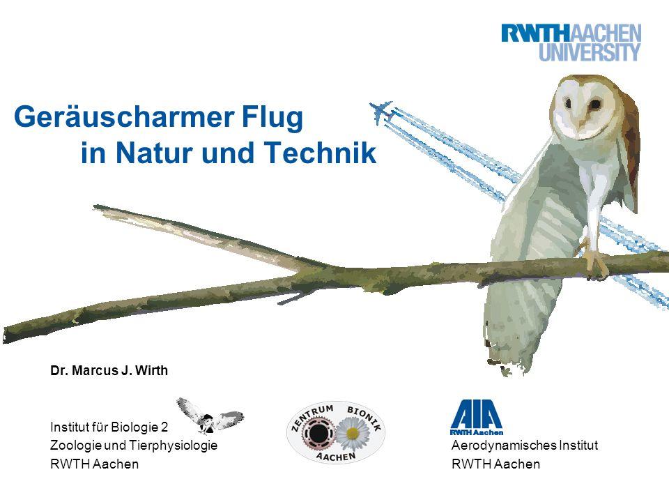 Geräuscharmer Flug in Natur und Technik Dr. Marcus J. Wirth Institut für Biologie 2 Zoologie und TierphysiologieAerodynamisches InstitutRWTH Aachen