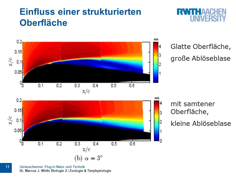 Einfluss einer strukturierten Oberfläche Geräuscharmer Flug in Natur und Technik Dr. Marcus J. Wirth| Biologie 2 | Zoologie & Tierphysiologie 11 Glatt
