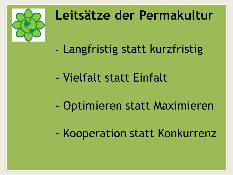 Vorsaison Mini-GewächshausLow-Budget Gewächshaus In der Vorsaison können die Pflanzen vorgezogen werden, um später kraftvoll im Permakulturbeet zu gedeihen.
