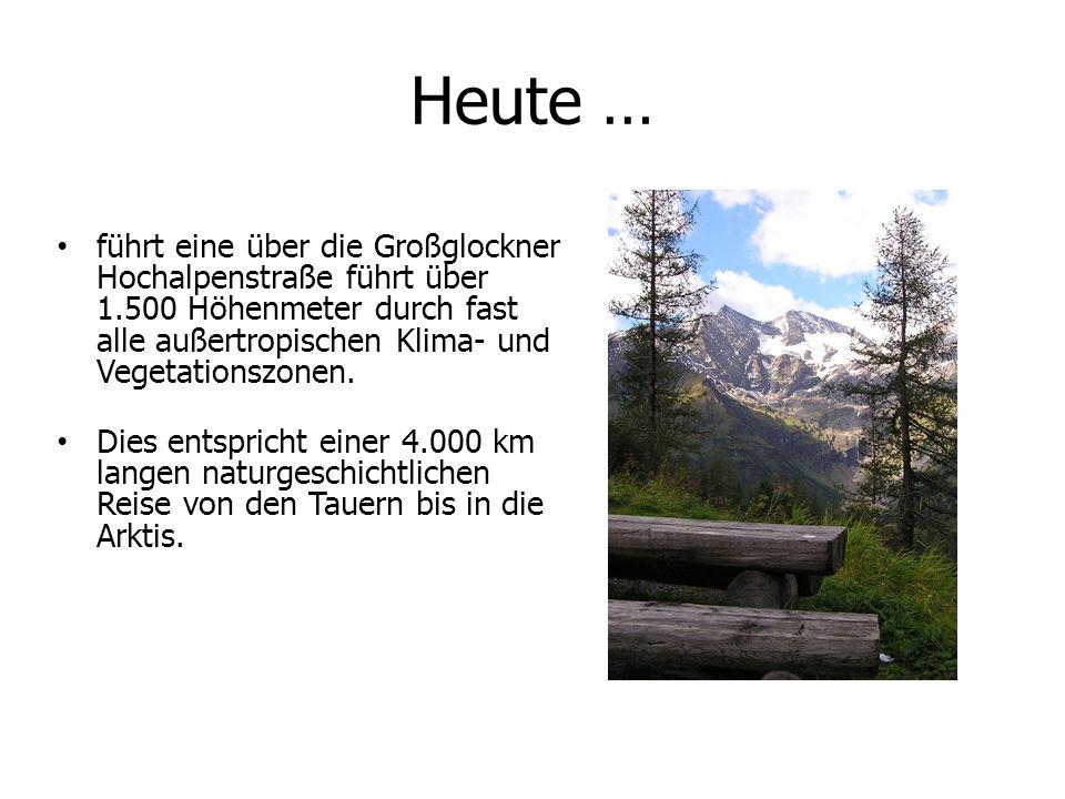Heute … führt eine über die Großglockner Hochalpenstraße führt über 1.500 Höhenmeter durch fast alle außertropischen Klima- und Vegetationszonen. Dies