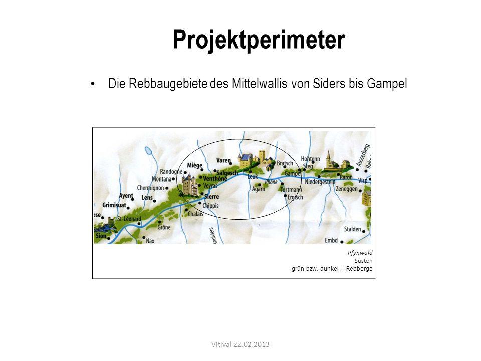 Pfynwald Susten grün bzw. dunkel = Rebberge Die Rebbaugebiete des Mittelwallis von Siders bis Gampel Projektperimeter Vitival 22.02.2013