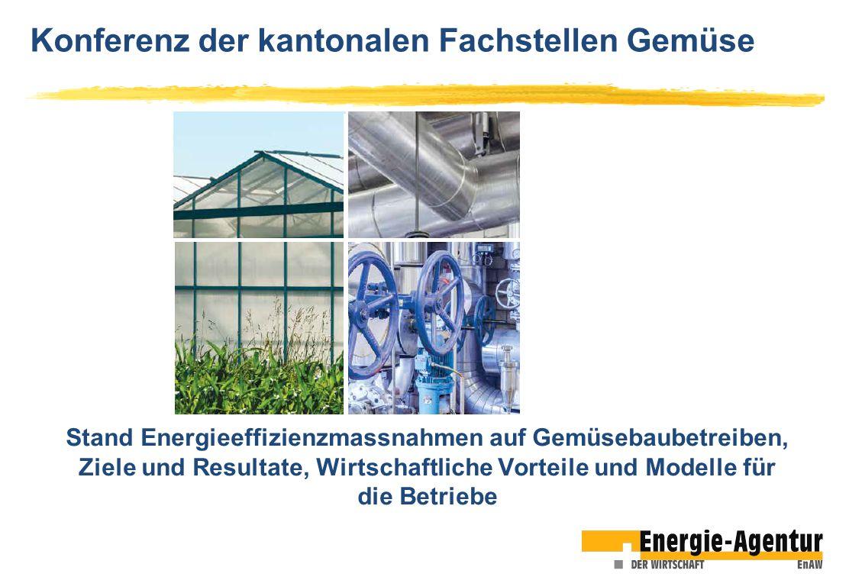 Konferenz der kantonalen Fachstellen Gemüse Stand Energieeffizienzmassnahmen auf Gemüsebaubetreiben, Ziele und Resultate, Wirtschaftliche Vorteile und