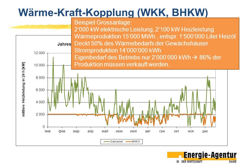 Beispiel Grossanlage: 2000 kW elektrische Leistung, 2100 kW Heizleistung Wärmeproduktion 15000 MWh, entspr. 1500000 Liter Heizöl Deckt 50% des Wärmebe