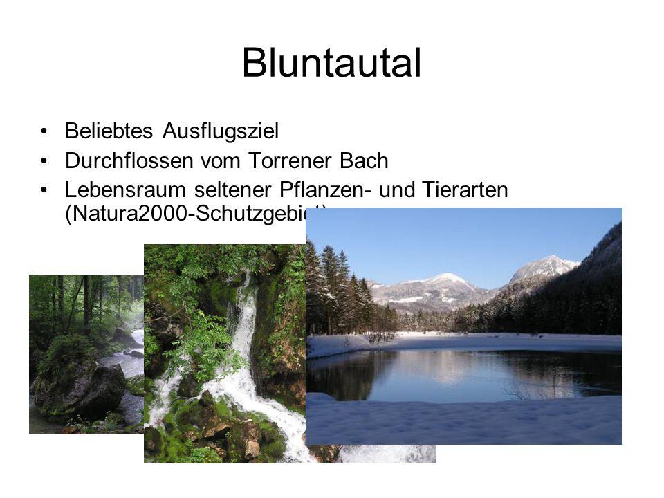 Bluntautal Beliebtes Ausflugsziel Durchflossen vom Torrener Bach Lebensraum seltener Pflanzen- und Tierarten (Natura2000-Schutzgebiet)