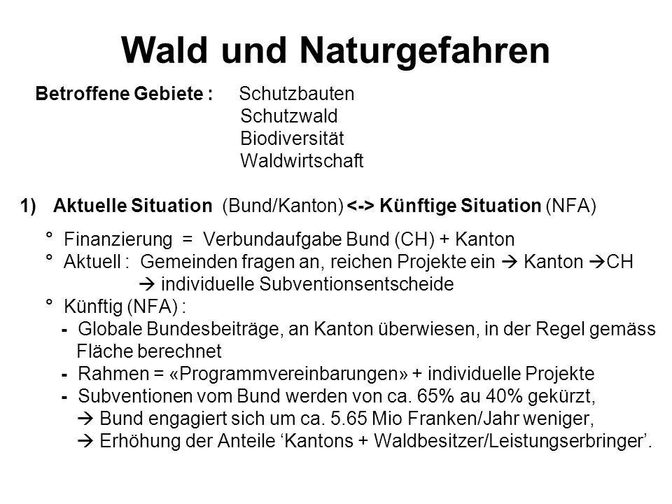 Wald und Naturgefahren Betroffene Gebiete : Schutzbauten Schutzwald Biodiversität Waldwirtschaft 1)Aktuelle Situation (Bund/Kanton) Künftige Situation