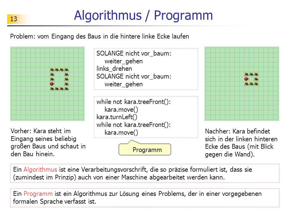 13 Algorithmus / Programm Problem: vom Eingang des Baus in die hintere linke Ecke laufen Programm SOLANGE nicht vor_baum: weiter_gehen links_drehen SO