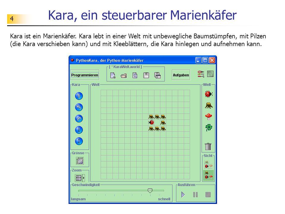 4 Kara, ein steuerbarer Marienkäfer Kara ist ein Marienkäfer. Kara lebt in einer Welt mit unbewegliche Baumstümpfen, mit Pilzen (die Kara verschieben