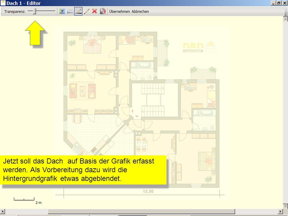 Mit der Funktion Neue Linie zeichnen werden nun alle benötigten Linien des Daches im Grundriss eingetragen.