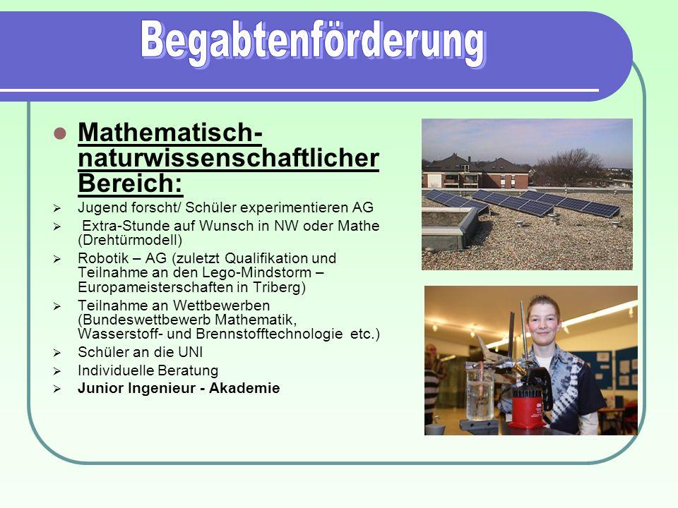 Mathematisch- naturwissenschaftlicher Bereich: Jugend forscht/ Schüler experimentieren AG Extra-Stunde auf Wunsch in NW oder Mathe (Drehtürmodell) Rob