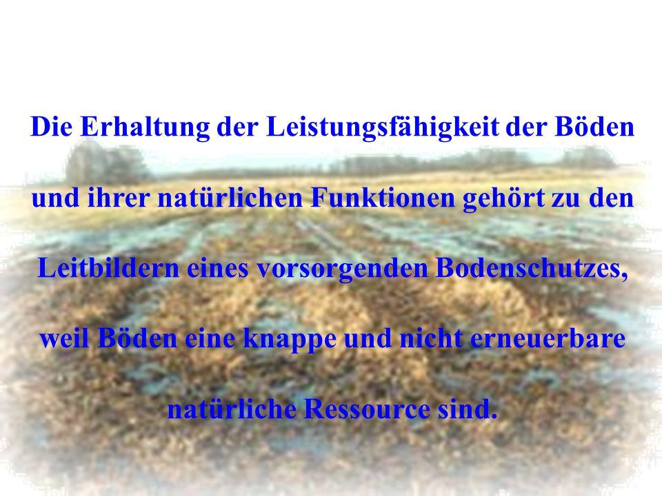 Die Erhaltung der Leistungsfähigkeit der Böden und ihrer natürlichen Funktionen gehört zu den Leitbildern eines vorsorgenden Bodenschutzes, weil Böden