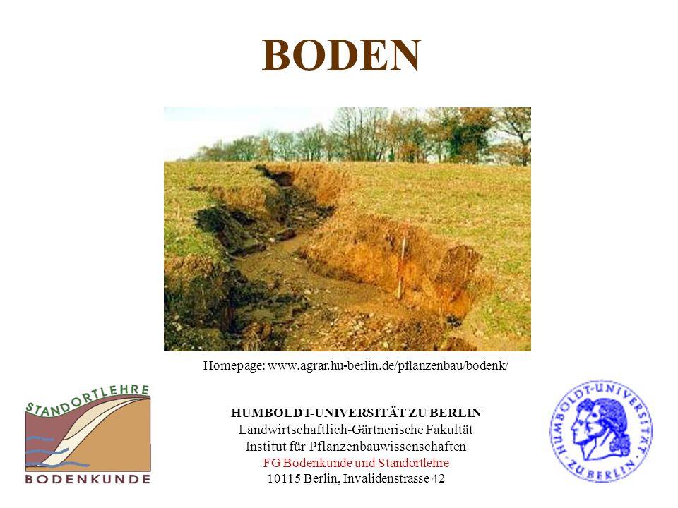 BODEN Homepage: www.agrar.hu-berlin.de/pflanzenbau/bodenk/ HUMBOLDT-UNIVERSITÄT ZU BERLIN Landwirtschaftlich-Gärtnerische Fakultät Institut für Pflanz