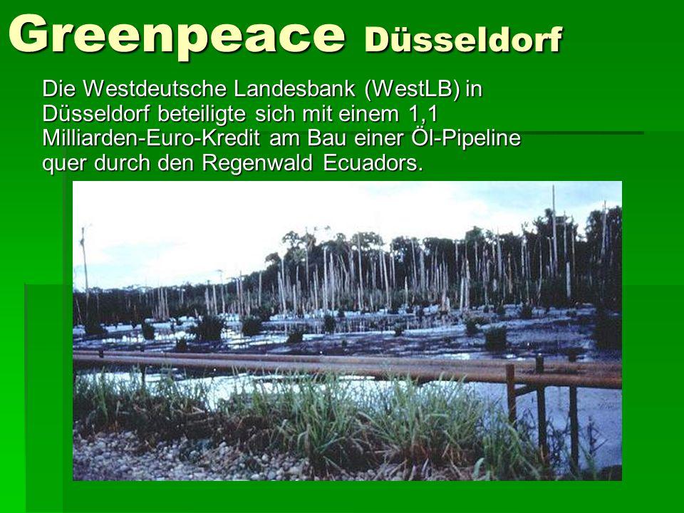 Greenpeace Düsseldorf Die Westdeutsche Landesbank (WestLB) in Düsseldorf beteiligte sich mit einem 1,1 Milliarden-Euro-Kredit am Bau einer Öl-Pipeline quer durch den Regenwald Ecuadors.