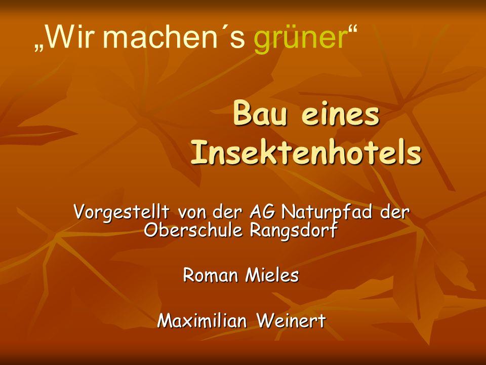 Bau eines Insektenhotels Vorgestellt von der AG Naturpfad der Oberschule Rangsdorf Roman Mieles Maximilian Weinert Wir machen´s grüner