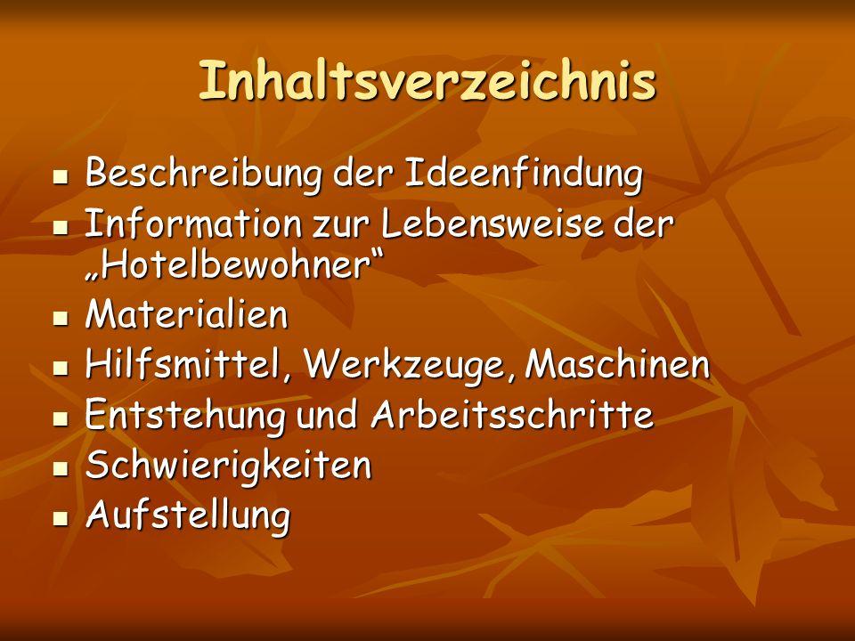 Inhaltsverzeichnis Beschreibung der Ideenfindung Beschreibung der Ideenfindung Information zur Lebensweise der Hotelbewohner Information zur Lebenswei