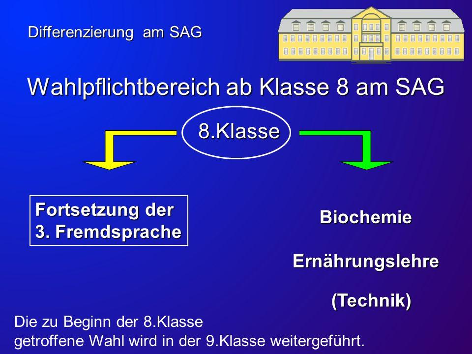 Technik Ein Angebot der Naturwissenschaften im Wahlpflichtbereich in der Klasse 7 Technik am SAG