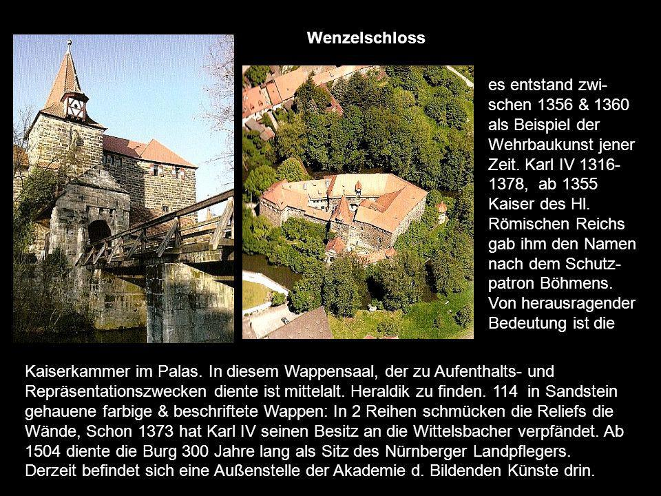 Anfang des 14.Jh errichteten die Wildensteiner eine Wehranlage auf dem Rothenberg. Sie ge- hörte danach Kaiser Karl IV, dann teilten sich 44 fränkisch