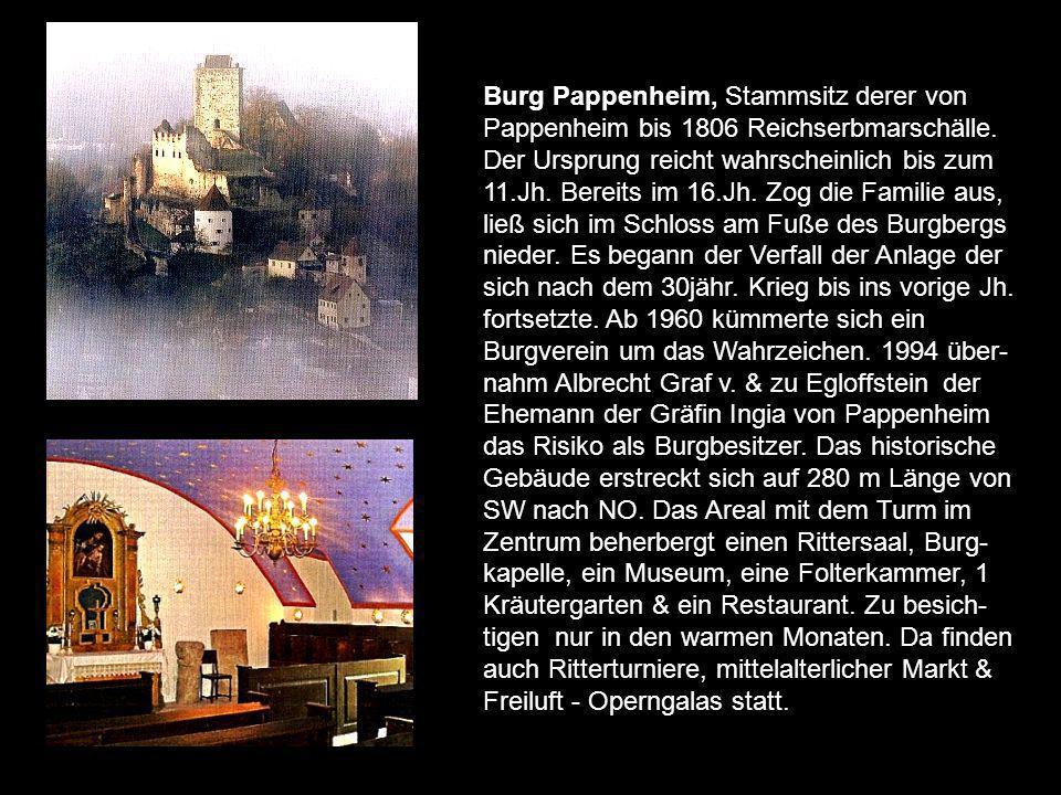 Burg Gößweinstein zählt zu den ältesten Festungsanlagen der Fränkischen Schweiz. Namensgeber für das Gemäuer war der Edle Goswin, der im 11.Jh. da leb
