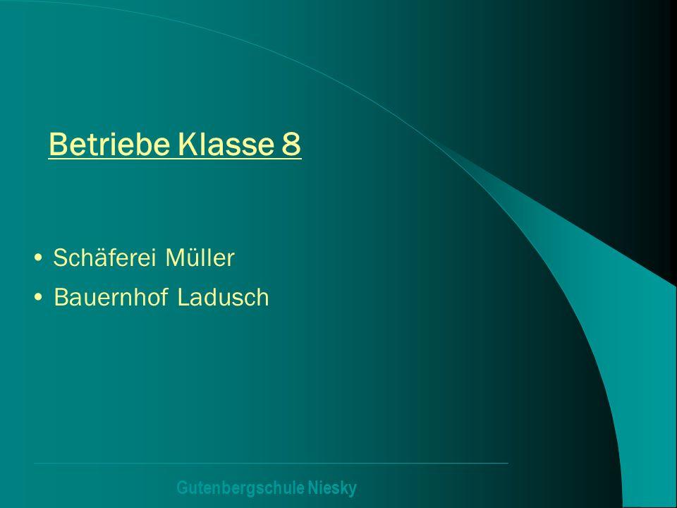 Gutenbergschule Niesky Betriebe Klasse 8 Schäferei Müller Bauernhof Ladusch