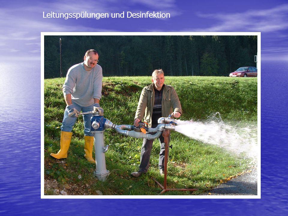 Leitungsspülungen und Desinfektion
