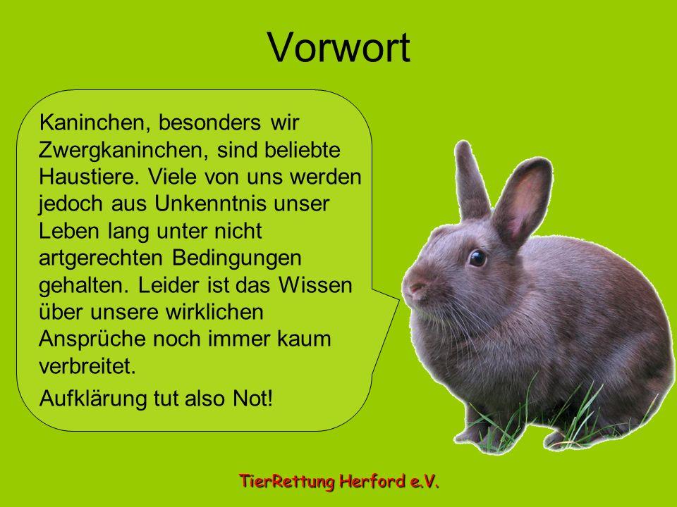 Vorwort TierRettung Herford e.V. Kaninchen, besonders wir Zwergkaninchen, sind beliebte Haustiere. Viele von uns werden jedoch aus Unkenntnis unser Le